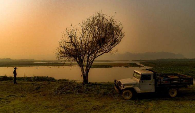 Cine Teatro realiza live com artistas e pesquisadores em prol do Pantanal