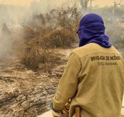 Sesc Pantanal vence etapa do Prêmio Aberje com documentário sobre incêndios de 2020