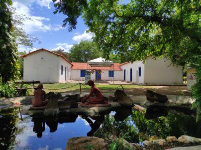 Museu realiza plantio de árvores e limpeza das margens do rio Cuiabá