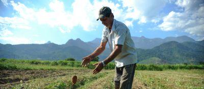 Agricultor: do pau-brasil ao topo da produção agrícola do mundo