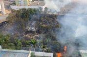 Vídeo: incêndio em terreno se alastra e bombeiros são acionados