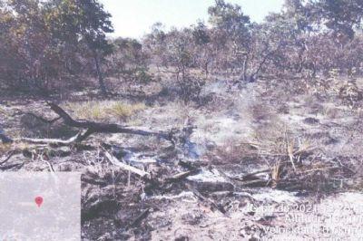 Fazendeiro é multado em R$ 10,4 milhões por queimada no Pantanal