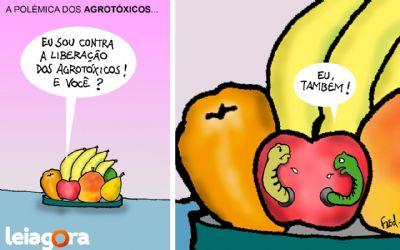 A polêmica dos agrotóxicos...
