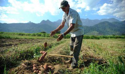 Inscrições para a Jornada Agro Íntegra poderão ser feitas até o dia 25 de junho