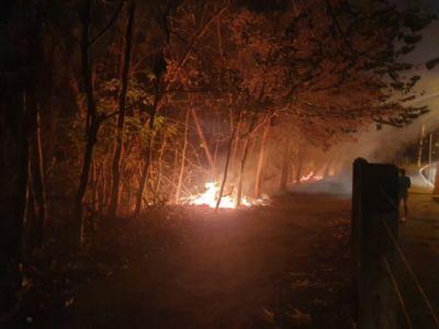 Incêndio atinge o Parque Massairo Okamura