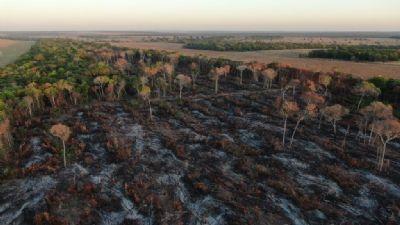 Temporada de incêndios florestais