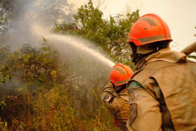 Estado se une às Forças Armadas e iniciativa privada no combate às queimadas no Pantanal