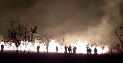 Corpo de Bombeiros prepara soldados para combate aos incêndios florestais