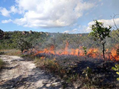 MT planeja empregar uso controlado do fogo para prevenção de incêndios