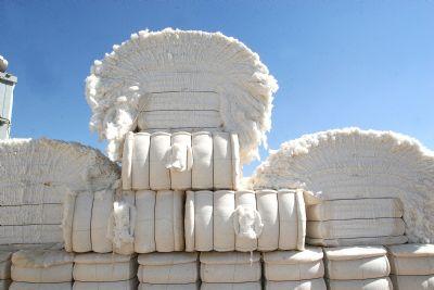Sete municípios de MT movimentam R$ 9,7 bilhões no agronegócio