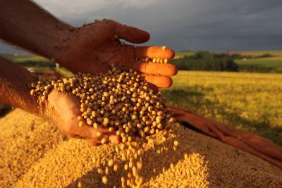 Agropecuária foi o único setor com desempenho positivo no 1º trimestre, diz CNA