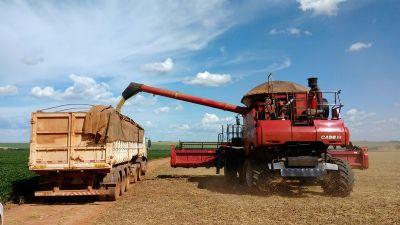 Colheita de soja da safra 19/20 em MT começa com leve atraso