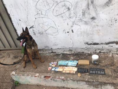 Com auxílio de cão farejador, policia encontra drogas enterrada em quintal; traficante é preso