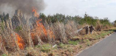 Bombeiros enfrentam dificuldades em conter incêndio na MT-010; fotos e vídeo