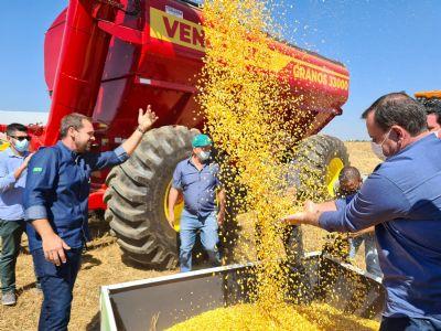 Armazenagem é tema da Abertura Nacional da Colheita do Milho