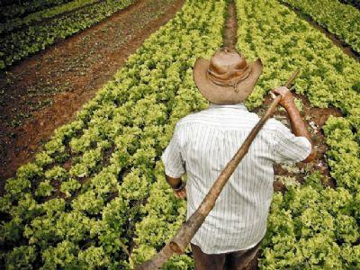 Agricultor familiar tem poucos dias para apresentar proposta de formação de estoque