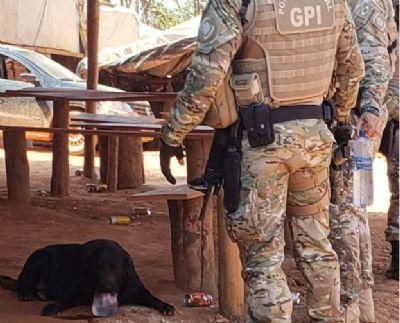 Policiais resgatam animais abandonados em garimpo ilegal