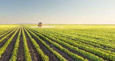 Diário Oficial traz publicação de defensivos agrícolas, com genéricos e produtos mais modernos