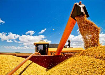87% da área de soja está semeada