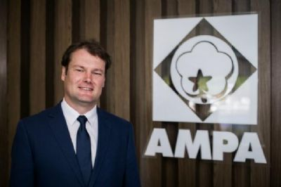 Ampa pede anulação da patente do algodão B2RF da Monsanto
