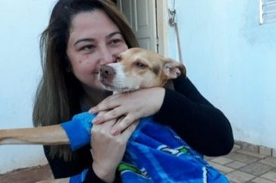 Após seis dias de buscas, cabeleireira recupera cãozinho perdido em acidente