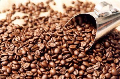 Mesmo com redução de área produção de café deve ser 14% maior neste ano em MT