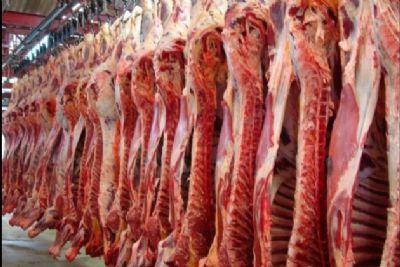 Arroba do gado tem queda de preço e volume de abates aumenta em MT