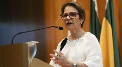 Em Nova York, ministra assina memorando para emissão de títulos verdes da agropecuária