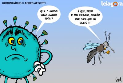 Coronavírus X Aedes Aegypti