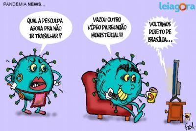 Pandemia News