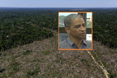 'Quem fizer desmatamento ilegal deve ser punido', afirma engenheiro florestal