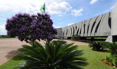 STJ suspende sessões presenciais e prazos processuais até 17 de abril
