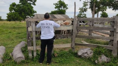 Polícia  prende suspeito de furto de gado e identifica associação criminosa em Poconé