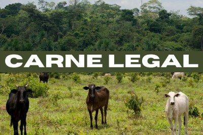 MPF aciona frigorífico por comércio de carne ilegal e pede indenização de R$ 312 mi