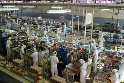 Mato Grosso recua na produção industrial