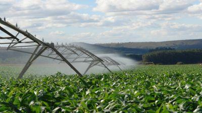 Mato Grosso passa São Paulo e lidera arrecadação da produção agrícola com R$ 102 bilhões em exportações