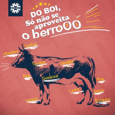 Campanha mostra que indústria utiliza derivados do boi como matéria prima