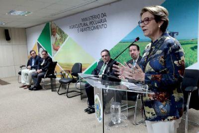 Não há razões para barreiras comerciais ao agronegócio por causa de queimadas, diz ministra