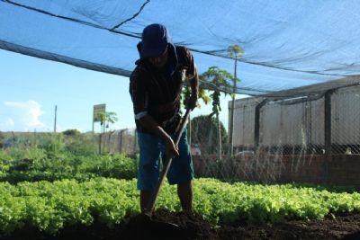 Mineradora Nexa incentiva regularização de produtores rurais em Aripuanã