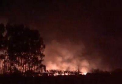 Bombeiros e brigadistas controlam incêndio florestal em Nova Mutum