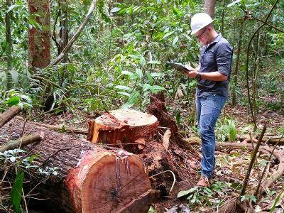 Produtores florestais atuam na prevenção e combate a incêndios