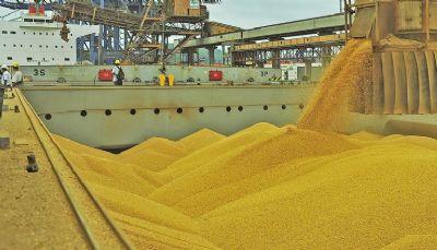 Anec reduz expectativa de exportação de soja em agosto para 6,4 milhões de toneladas