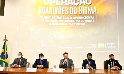 Governo lança plano para combater incêndios florestais