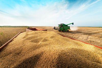 Governo aprova importação de matéria-prima para produção de biodiesel