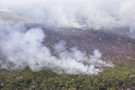 Mato Grosso é o estado com mais focos de queimadas no Brasil