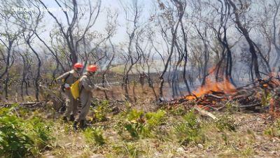Estudo do MPF aponta que 170 mil hectares ilegalmente desmatados foram alvo de queimadas