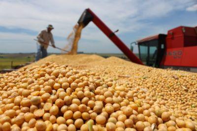 Comercialização da safra futura da soja está 80% acima da média dos últimos 5 anos