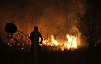 Pecuarista devem ficar atentos para início do período proibitivo de queimadas