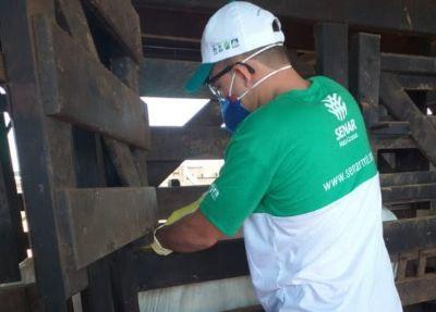 Pecuaristas se preparam para 2ª etapa de vacinação contra brucelose