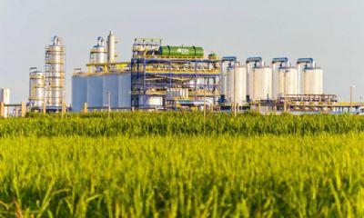 Etanol: hidratado sobe 0,94% e anidro aumenta 2,16% nas usinas